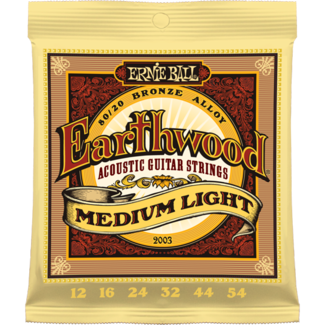 Ernie ball 2003 Earthwood-0